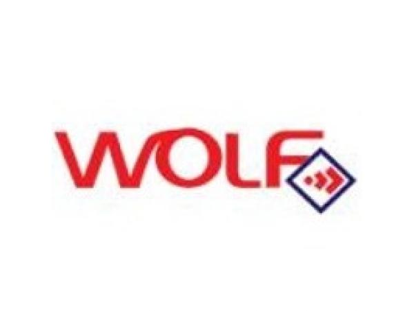 Lichid frana Wolf  DOT4 20L